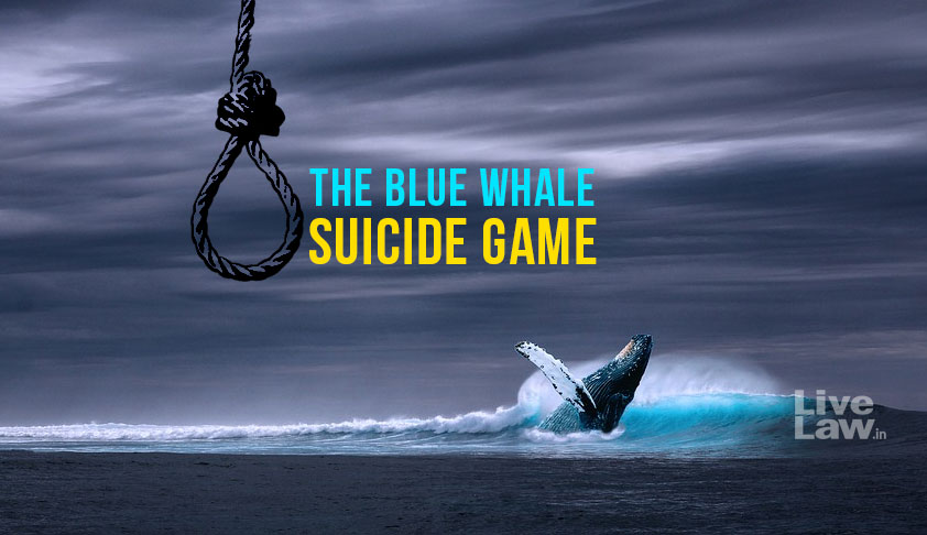 "Blue Whale Game Endangers Life; Use DD, Pvt Channels To End The ""Evil"": SC To  Centre [Read Order]"