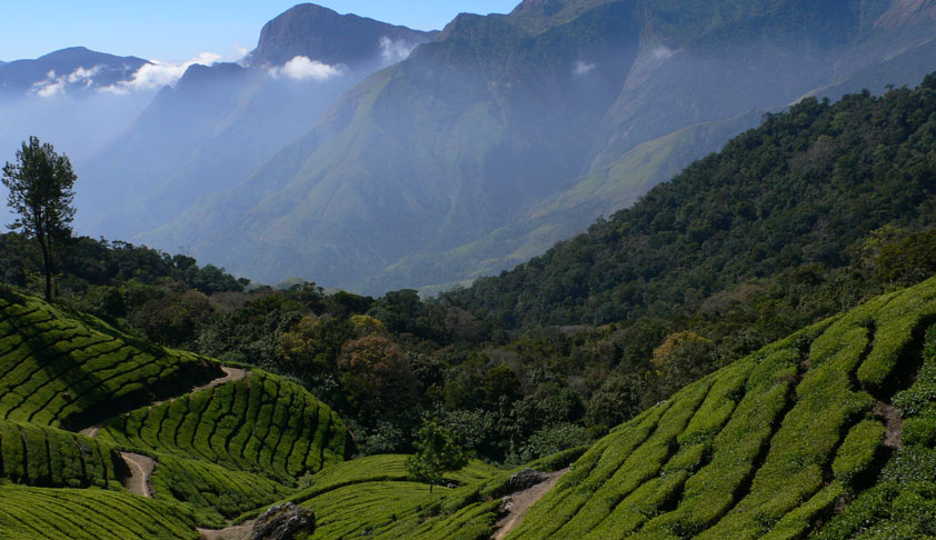 Environment Ministry Lifts ESA Restrictions For 3,115 Sq Kms Of Land In Western Ghats Of Kerala [Read Order]