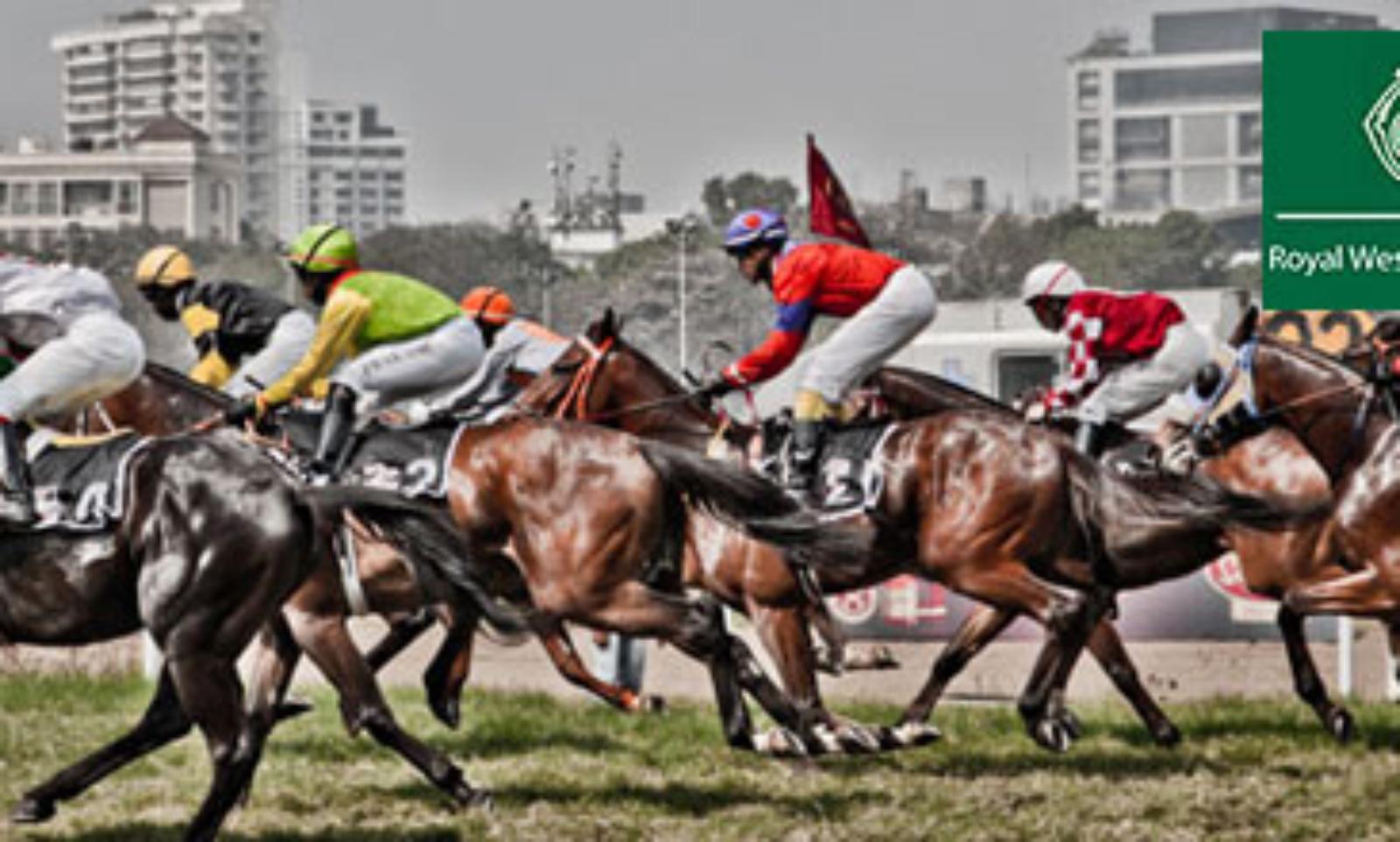 horse race betting in mumbai sanitation