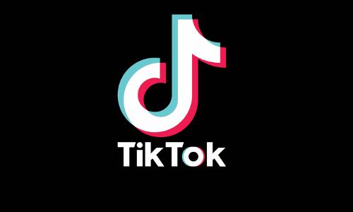 """""""Dangerous For Children"""": Madras HC Prohibits Downloading Of TikTok Mobile Application [Read Order]"""