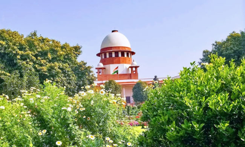 Plant 100 Trees Within A Year: SC Frees Man Found To Be Juvenile At The Time Of Alleged Attempt To Murder [Read Order]