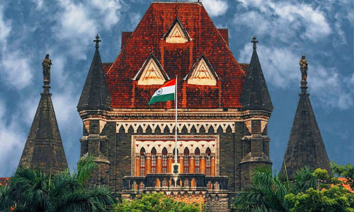 Give Child For Adoption Or Choose Abortion: Bombay HC Tells