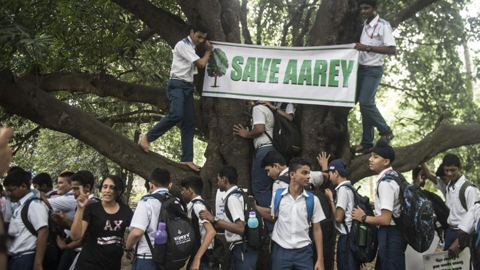 Breaking- Bombay HC Clears Cutting Of Trees In Aarey For Metro Car Shed Project [Read Judgment]