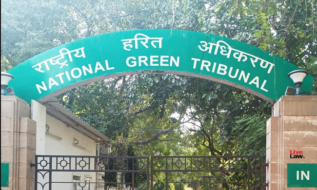 NGT Directs State Of Punjab To Take Remedial Steps To Check Pollution Of Rivers Satluj And Beas [Read Order]