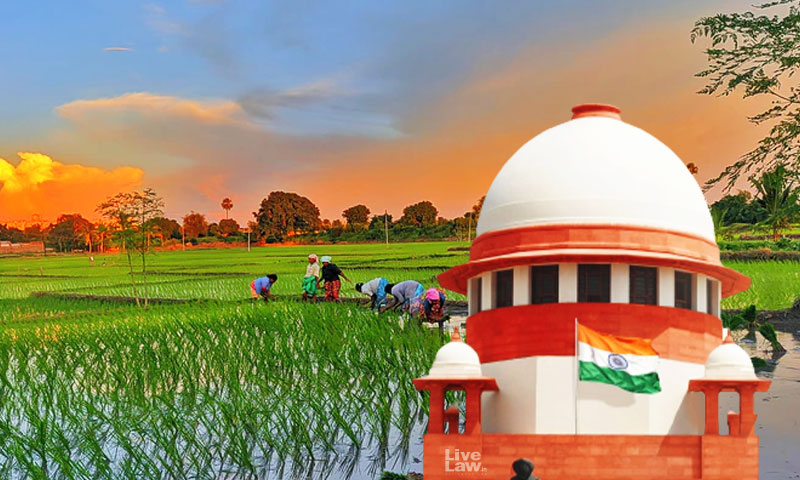 SC To Consider Pleas Challenging Farmers Acts Tomorrow