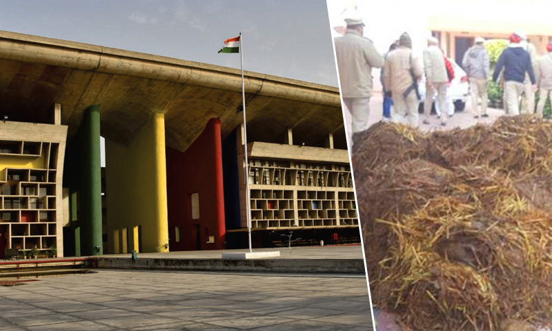 Cow Dung Dumping, Protesters Can't Violate Fundamental Rights Of Others