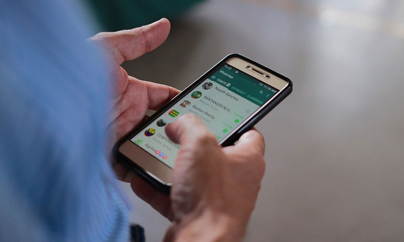 WhatsApp Group Administrator Not Liable For Members Objectionable Post If There Is No Common Intention : Bombay High Court