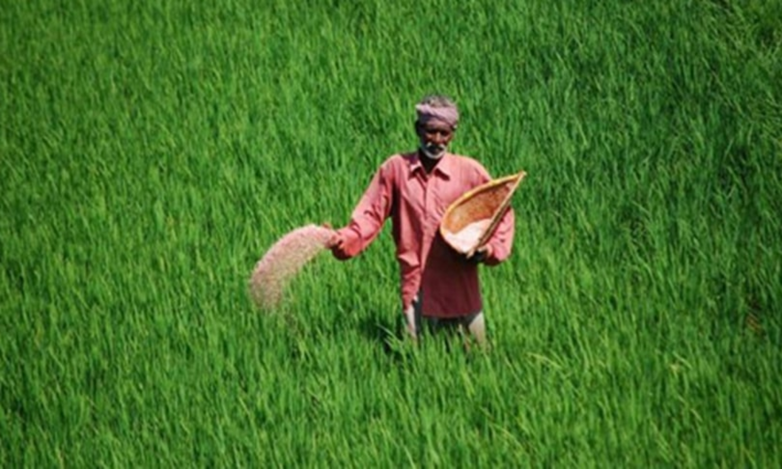 livelaw.in - Akshita Saxena - Parliament Passes Contentious Agricultural Bills For Inter-State Trade, Contract Farming [Read Bills]
