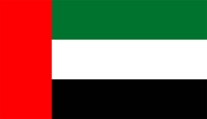UAE Decriminalizes Attempted Suicide, Alcohol Consumption & Cohabitation Of Unmarried Couples; Amends Personal & Succession Laws